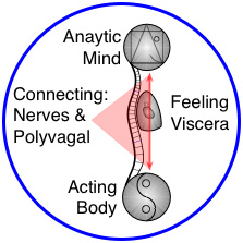 Mind-Body & Yin-Yang in Yoga Therapy & Yoga-based Bodywork