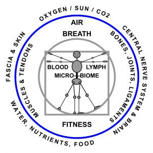 Elements of Whole Health Healing Systems & Inputs